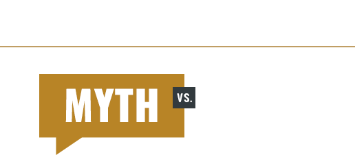 Myth vs Fact Logo